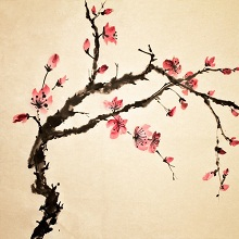 Chinese Brush Painting: Spring into Summer : Jean Turton