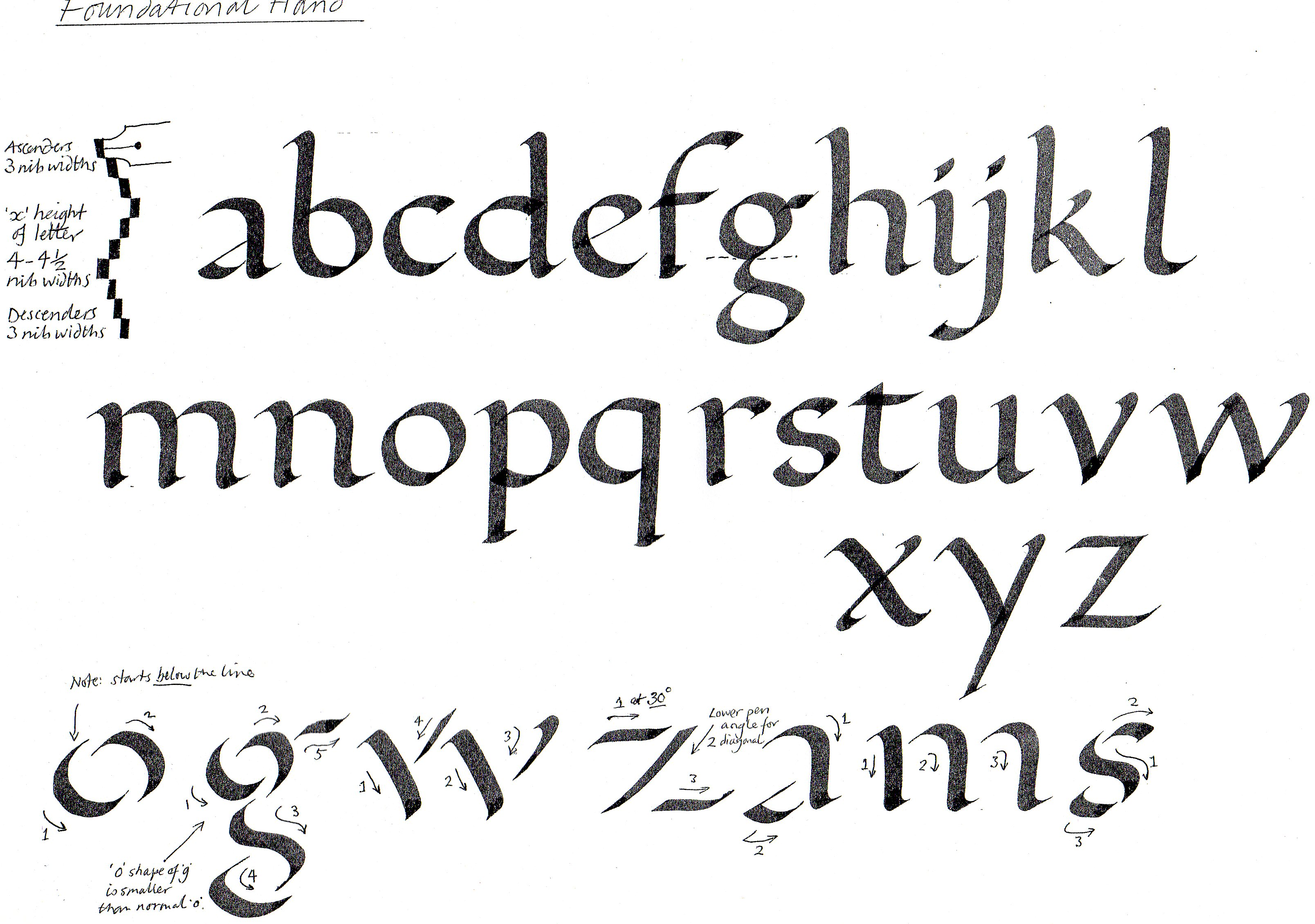 Calligraphy: An Introduction : David Nicholls