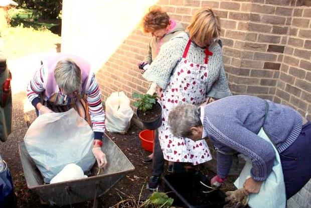 Gardening: Letta's Reunion : Letta Jones