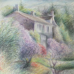 Drawing with Coloured Pencils : Sue Klemencic