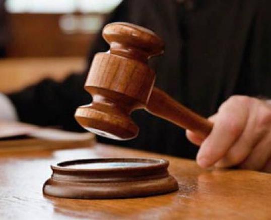 Criminology: You the Jury: Denman Casebook 2: Diane Janes