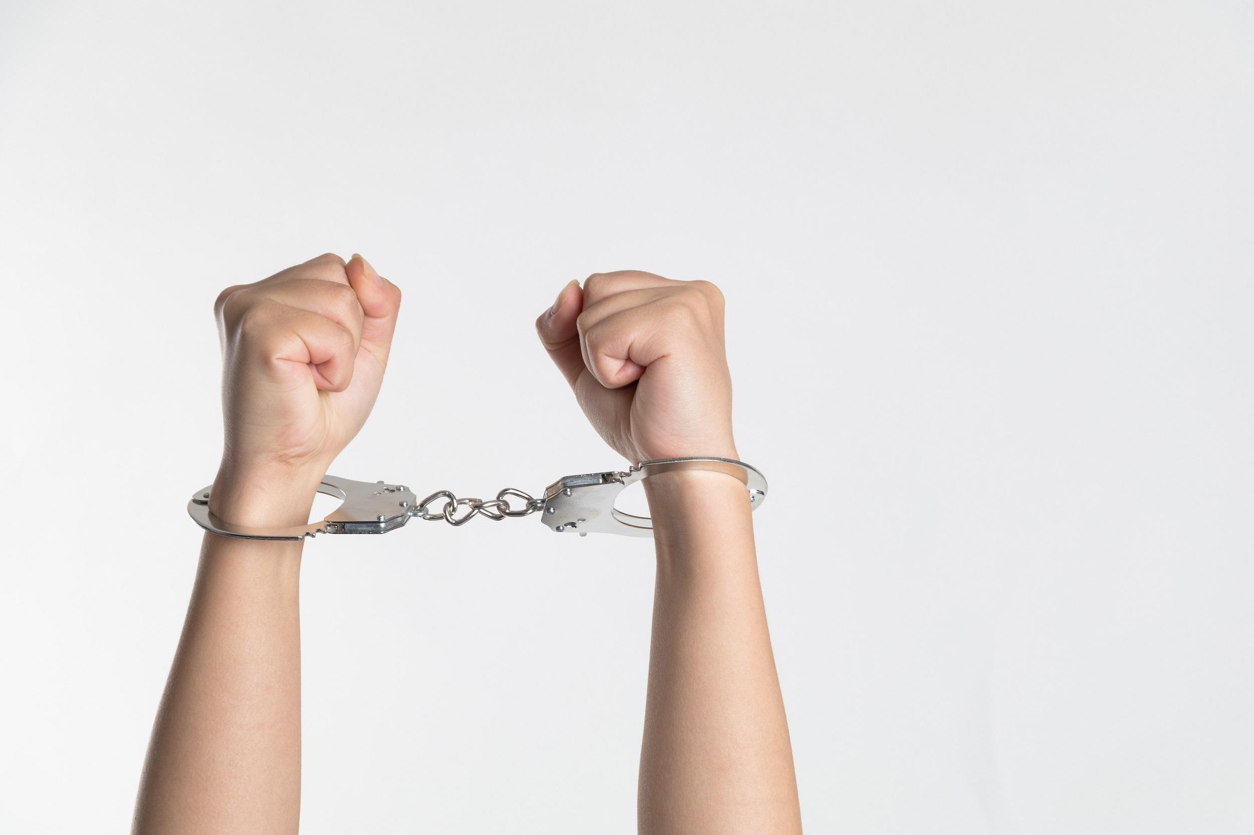 Criminology : You the Jury : Denman Case Book 3 : Diane Janes